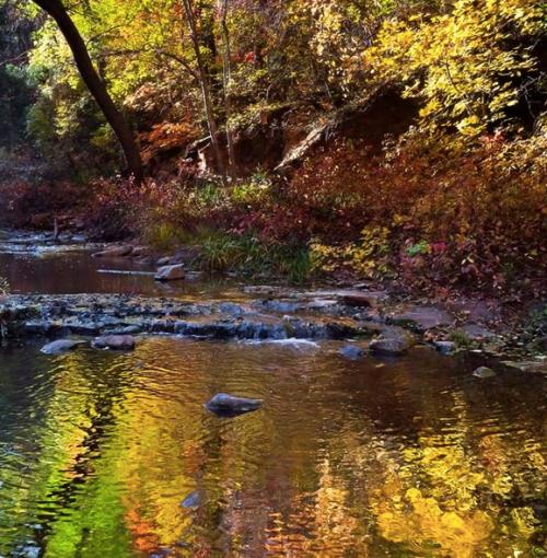 oak creek canyon Allie Ollie Fall 2013 Mood Board Inspiration